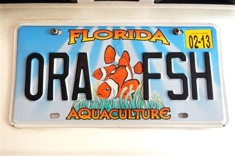 Florida Vanity Plates by Ora Decks Out Your Car With Aquaculture Themed License