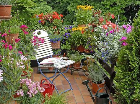 Planting Ideas For Small Gardens Gardening Ideas For Balconies Patios Courtyards Saga