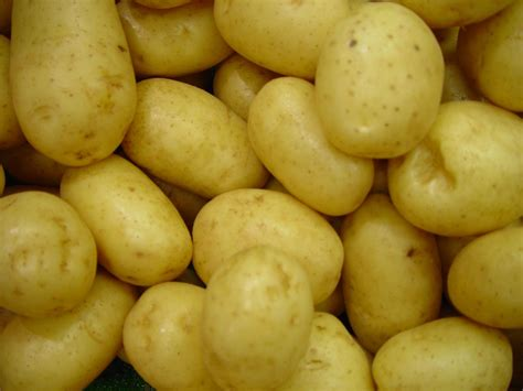 file delaware potatoes vegetable jpg wikimedia commons