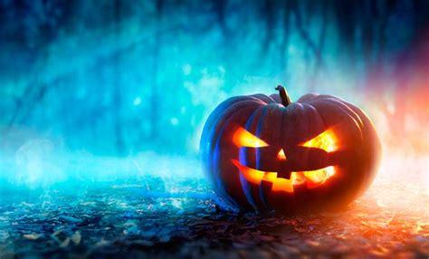 halloween camping  eerie ideas   stop