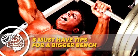 bigger bench 5 must have tips for a bigger bench generation iron