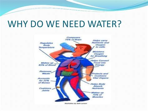 8 Reasons We Need by Water Presentation Advantages Of Water