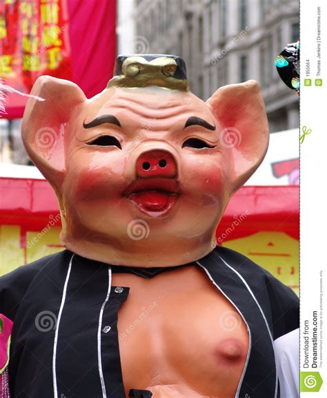 new year monkey pig pig at new year stock images image 1955664