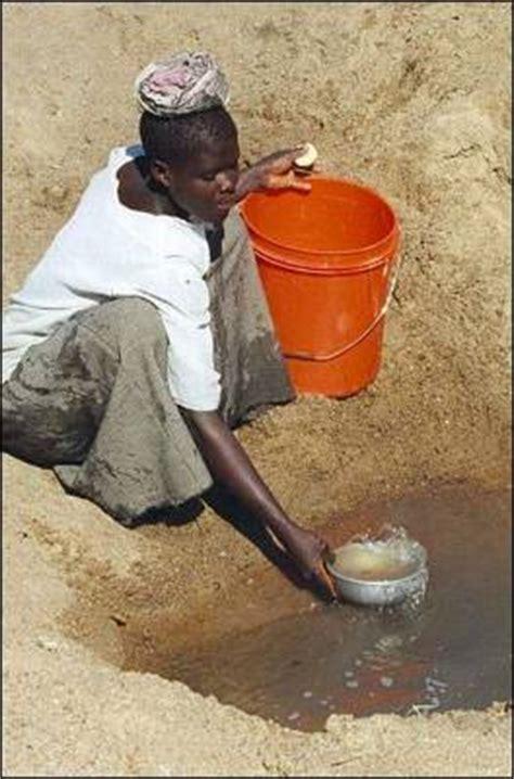 jardineria casi sin agua casi 900 millones de personas viven sin agua potable y el triple sin saneamiento ojal 225