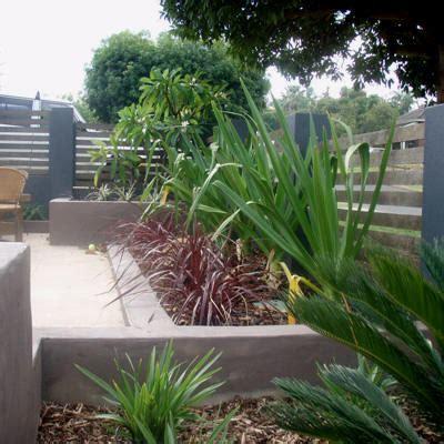 Contemporary Garden Plants Plants For A Modern Garden
