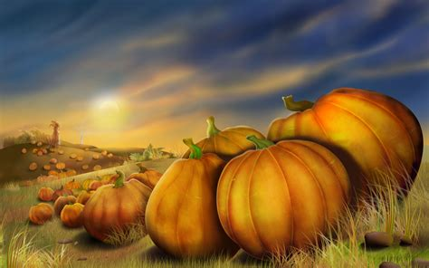 pumpkins with fall leaves royalty free stock p 2259 hd
