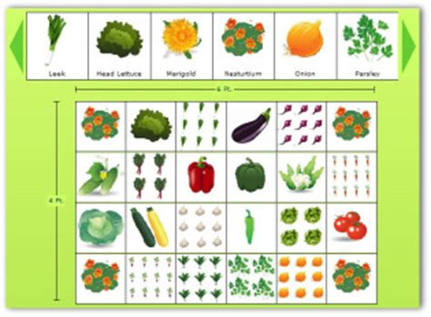 Free Vegetable Garden Layout Free Vegetable Gardening Software To Design Your Garden
