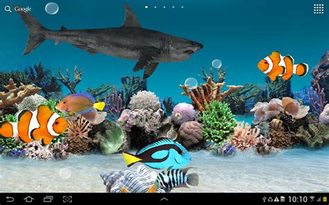 3d live fish wallpaper for pc 3d aquarium live wallpaper 1280x800 1410 56 kb