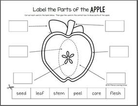 apple life cycle printable packet mamas learning corner