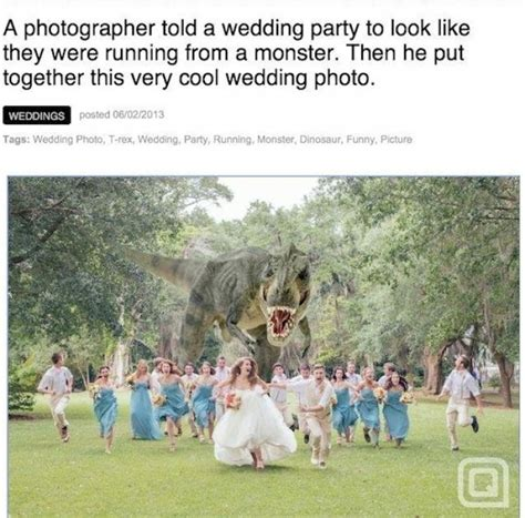 Wedding Photographer Meme - best t rex wedding photo ever