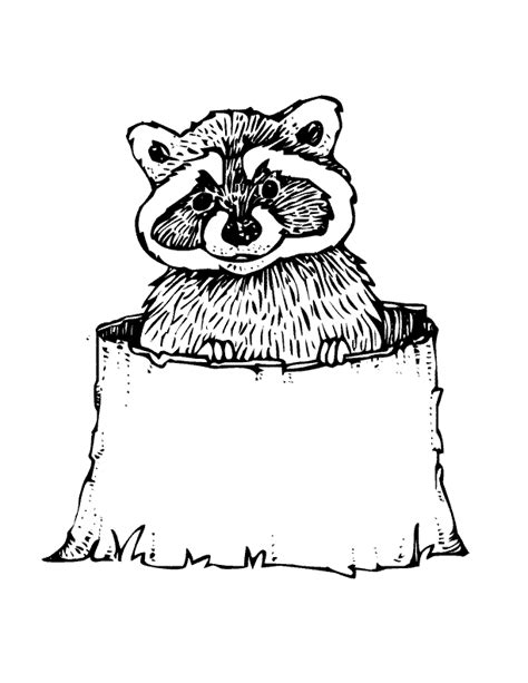 free coloring pages woodland animals woodland animals coloring page coloring home