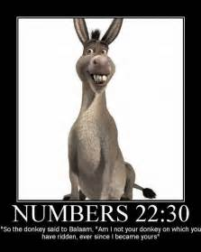 funny bible quotes quotesgram