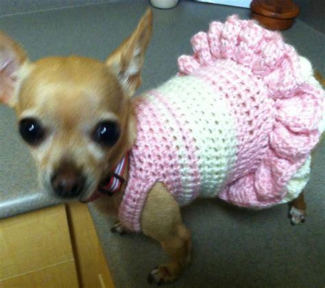 ballerina crochet dog dress  craftsy