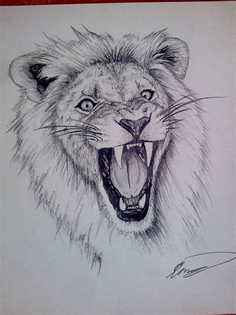 gallery free 3d drawing downloads drawing art gallery pencil drawing lion images download free download lion