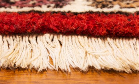 rug cleaning orlando why it s better to hire professionals to clean the rugs rise miami news