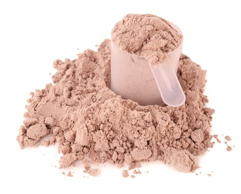 protein powder the best protein powder for building revealed