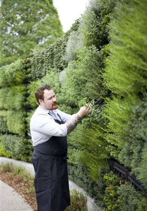 Vertical herb garden   Herb Gardens/Gardening Plans, Tips