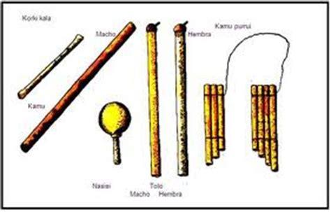Imagenes Instrumentos Musicales De La Region Amazonica | aplicaci 211 n metodolog 205 a ense 209 anza aprendizaje utilizando