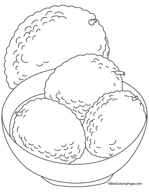 Pond Life Coloring Pages Az Coloring Pages Pond Coloring Page