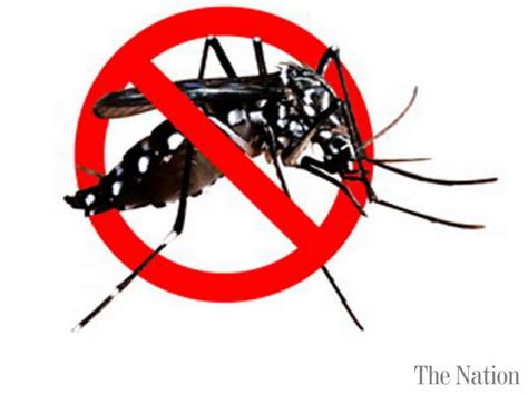 Stop Demam Berdarah Dengue anti mosquito drive to start from tomorrow