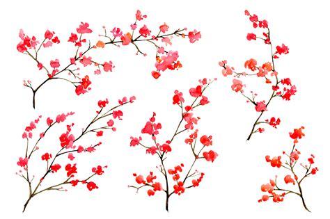 design flower branch watercolor floral branches 10 png by w design bundles