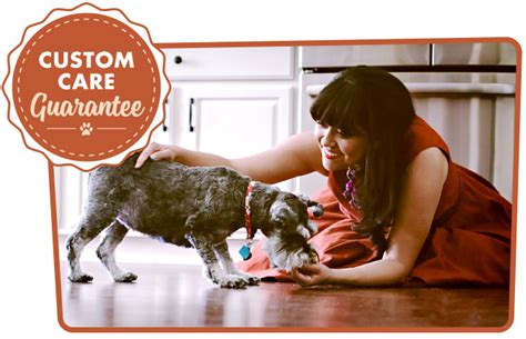 home canine cuties in home pet care