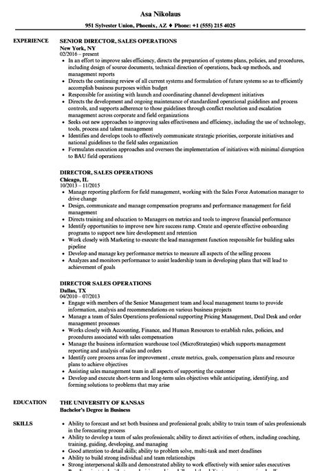 sle resume for director of operations free receipt template