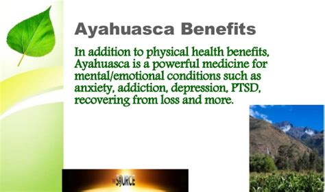 Ayahuasca Detox by Health Healing Beneficial Treatments In Peru
