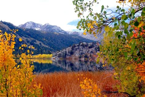 california fall color the 7 best spots for fall color in california kcet