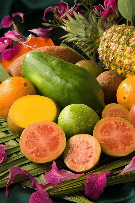 fruits rungis la gourmandise des fruits exotiques march 233 de rungis