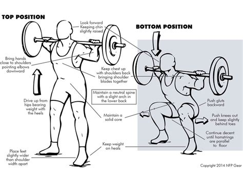 Proper Bench Press Techniques Squats 8 Reasons To Do This Misunderstood Exercise