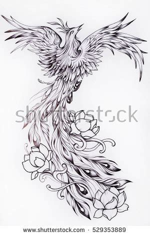 phoenix tattoo stock images royalty free images amp vectors