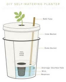 diy self watering planter american preppers network