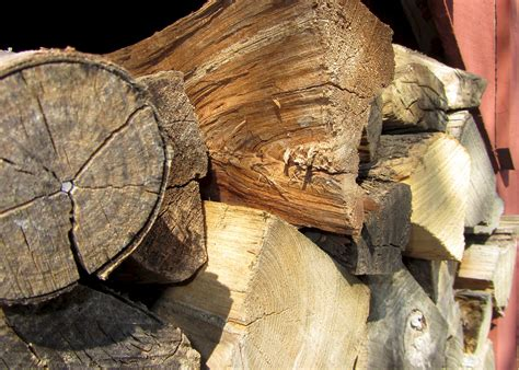 current best wood to burn in your fireplace or stove
