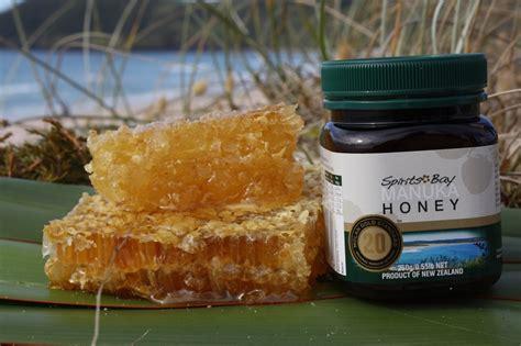 Watson Honey Manuka Honey 10 500g 13 best w s manuka honey images on manuka