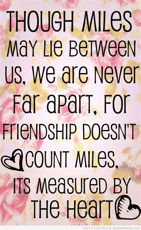 friendship quotes top 30 best friend quotes quotes and humor