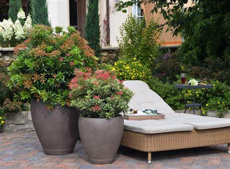 balkongarten anlegen winterharte pflanzen f 252 r die terrasse bodendecker set 100