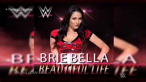 theme song you are beautiful wwe brie bella 4th theme song quot beautiful life quot 2014 2015