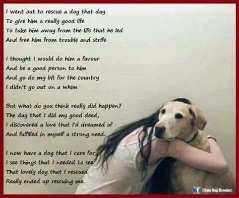 poems about dogs poems and quotes about dogs quotesgram