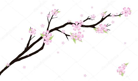 fiori di ciliegio stilizzati sfondo con fiori di ciliegio stilizzati vettoriali stock