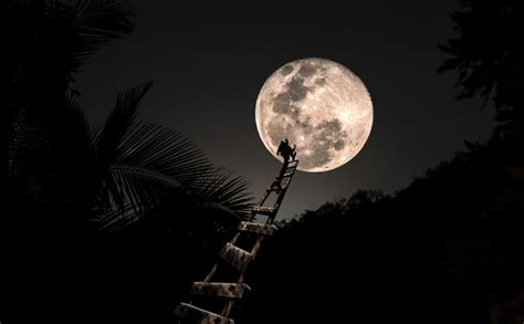 reaching for the moon reaching for the moon www imgkid com the image kid has it