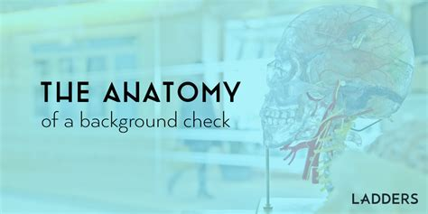 Macy S Background Check The Anatomy Of A Background Check Ladders Business