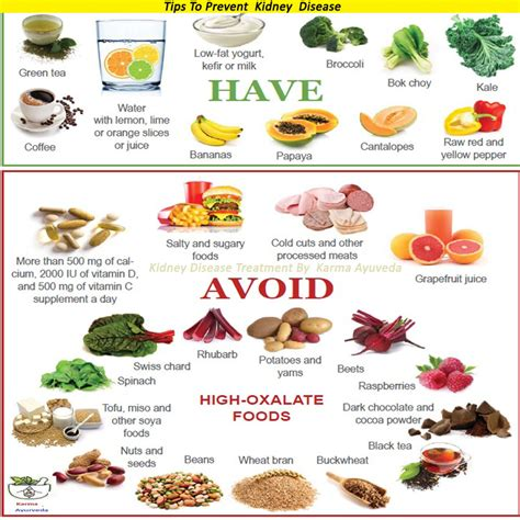 kidney disease diet list of synonyms and antonyms of the word kidney disease diet