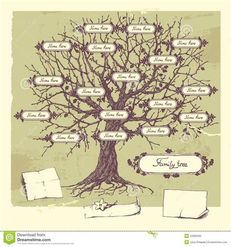 Family Tree Stock Vector Illustration Of Botanical 22080265 Family Tree Stock Images Royalty Free Images Vectors