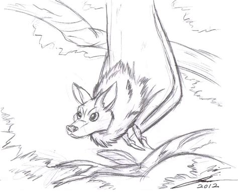 bat sketch by slasher12 on deviantart
