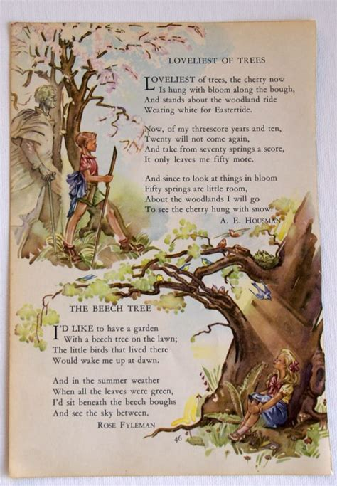 tree soldier a children s book about the value of family books vintage children s book tree illustration with poem by a