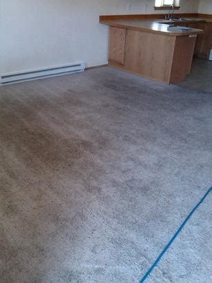carpet cleaning company in bozeman great falls helena