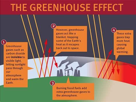 Greenhouse Effect Essay In by Term Paper Greenhouse Effect