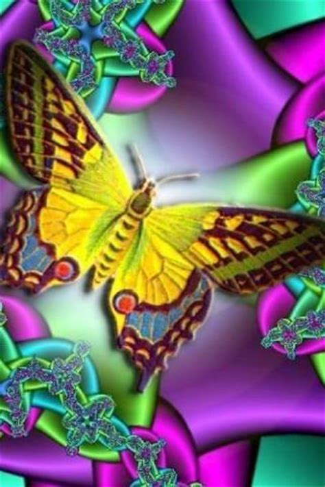 butterfly  wallpaper hd android informer hd