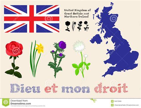 simboli dei fiori simboli regno unito della gran bretagna e nordico